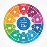 10 comidas altas en cobre Infographics de la nutrición Imágenes de archivo libres de regalías