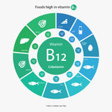 Comidas altas en la vitamina B12 Foto de archivo