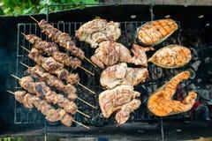 Comidas asadas a la parrilla adornadas Pollo clasificado, salmón, carne Barbacoa Fotografía de archivo