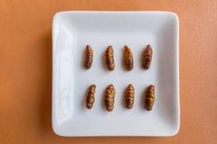 Comidas del insecto en magdalenas del pl?tano imágenes de archivo libres de regalías