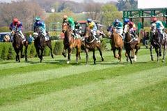 Comienzo de la carrera de caballos foto de archivo