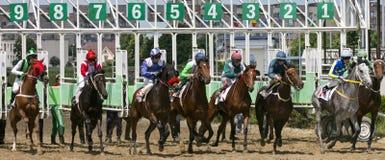 Comienzo de la carrera de caballos Imagenes de archivo