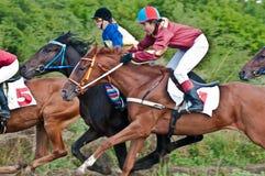Comienzo de los caballos que compiten con que comienzan una raza Fotos de archivo libres de regalías
