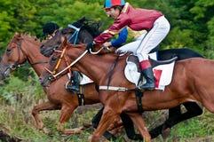 Comienzo de los caballos que compiten con que comienzan una raza Fotos de archivo