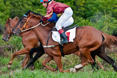 Comienzo de los caballos que compiten con que comienzan una raza Fotografía de archivo