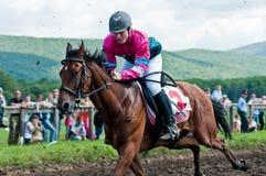 Comienzo de los caballos que compiten con que comienzan una raza Imagenes de archivo
