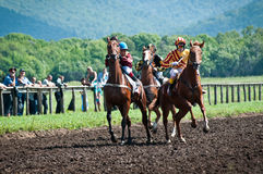 Comienzo de los caballos que compiten con que comienzan una raza Foto de archivo libre de regalías