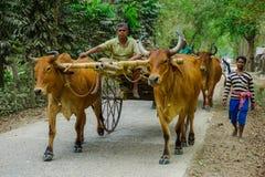 Comienzo del día laborable Pueblo de Mayapur, la India fotos de archivo libres de regalías