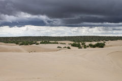 Comig storm at Thar desert Stock Photo