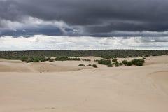 Comig storm at Thar desert Stock Photo