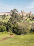 Comillas foundation with a horse Royalty Free Stock Photography
