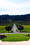 Coming and Going to Winery. A view from up top a Winery in Napa with one car leaving and one coming Royalty Free Stock Photography