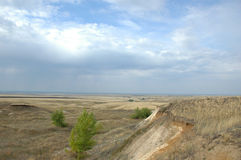 Coming nearer rain in steppe Royalty Free Stock Photo