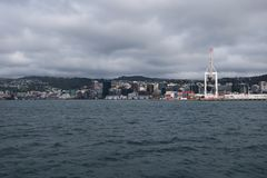 Coming to Wellington by boat. New Zealand. royalty free stock photo