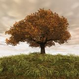 Coming rain. 3d render of a cherry tree in a autumn day Royalty Free Stock Images