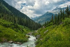 Coming Storm. Asulkan Valley, Glacier National British Columbia Canada Royalty Free Stock Photography