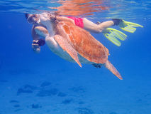 Coming up for air snorkelling  with turtles   Curacao views Royalty Free Stock Photography