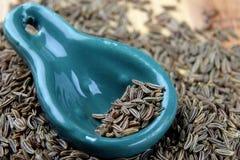 Cominhos da semente de alcaravia imagem de stock