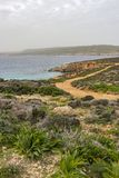 Comino landscape with island vegetation, part of the Blue Lagoon and Gozo in the distance. Comino landscape with overcast sky, island vegetation, part of the royalty free stock image