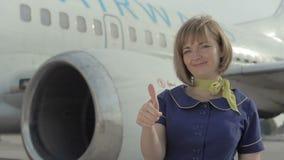 A comissária de bordo de sorriso nova está no fundo do avião vídeos de arquivo