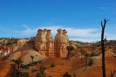 Comité de reflexionar los gigantes de la roca, parque nacional del barranco de Bryce, Utah Imagen de archivo libre de regalías
