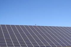 Comitati solari sotto cielo blu Immagini Stock Libere da Diritti