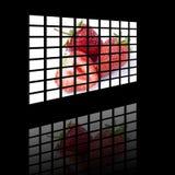 Comitato dell'affissione a cristalli liquidi Fotografie Stock Libere da Diritti