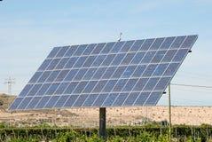 Comitato solare ad una piantagione Immagini Stock