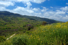 Commandaria landscape in cyprus Stock Image