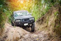 commande de 4 roues dans la forêt Photos libres de droits