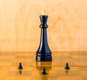 Commander-in-chief on the chessboard. The commander-in-chief on the chessboard is a battlefield where pawns defend their king sometimes sacrificing themselves Royalty Free Stock Photography