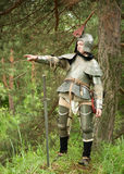 Commanding Knight. Knight in armour commanding in pine forest Royalty Free Stock Images