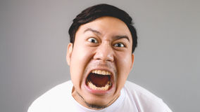 Commanding loudly at the camera. Stock Images