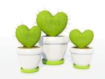 comme coeur de cactus Photo libre de droits