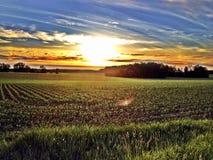 Comme le soleil place Photo libre de droits
