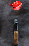 Commemorative Ceramic Poppy in a Glass Vase Stock Image