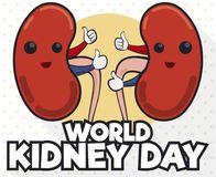 Cute Kidneys with Thumb up for World Kidney Day Celebration, Vector Illustration. Commemorative design in flat style with cute kidney partners with thumb up vector illustration