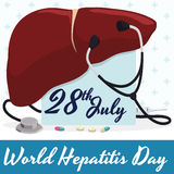 Commemorative Design for Hepatitis Day with Liver, Stethoscope and Medicines, Vector Illustration Stock Image