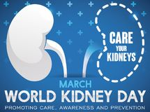 Design for Kidney Day Promoting the Importance in Kidney Care, Vector Illustration. Commemorative poster showing the importance in the care and prevention of Royalty Free Stock Photo