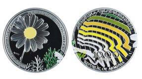Commemorative Silver Coin Stock Photography