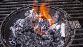 Commencer le charbon de bois clips vidéos