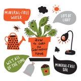 Comment cultiver l'usine carnivore Affiche infographic tirée par la main drôle au sujet d'attrape-mouche de venus Conception de v illustration libre de droits