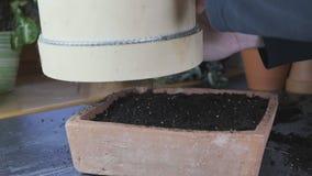 Comment utiliser un tamis en bois de jardin pour semer le sol ou les milieux de culture clips vidéos