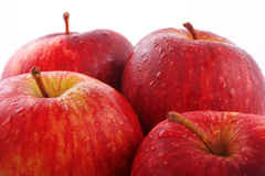 Comment vous vont-elles les aiment-elles les pommes ? Photos libres de droits