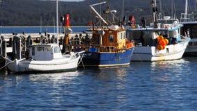 Commerciële de vissersvlootboten van Eden stock footage