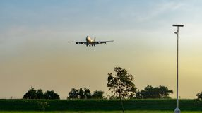 Commercial airline. Passenger plane landing above green trees at airport with beautiful sunset sky and clouds. Arrival flight. Wire fence and green hedge fence royalty free stock image