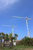 Commercial cranes Stock Photo