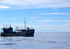 Commercial fisherman. Fishing boat full of fishermen catching tuna on the ocean in the Cape, South Africa stock photo