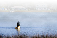 Commercial Fisherman in the Fog Royalty Free Stock Photo