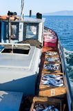 Commercial fishery Royalty Free Stock Photography